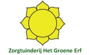 logo HGE web groot